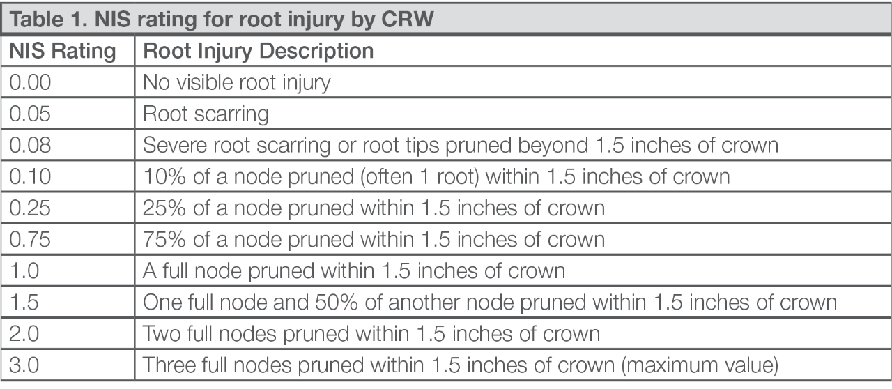 Table 1. NIS rating for root injury by CRW
